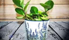 Decoupage with napkins on flower pot (lavender)